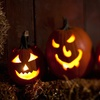 Half Off Haunted House and Hayride in Williamstown