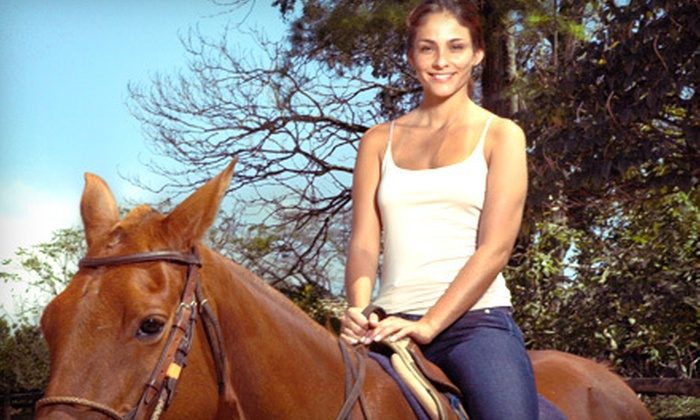The Riding School at Winnerhaven - Panoramic Hills: $45 for Two Horseback-Riding Lessons at The Riding School at Winnerhaven in Leander ($90 Value)