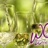 55% Off Wine Tasting and Souvenir Glass