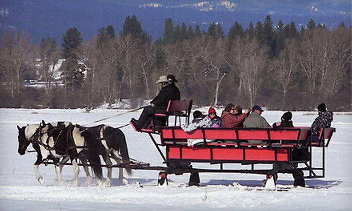 Idaho Sleigh Rides - Garden Valley: Sleigh Ride for 1 or 12 or Sleigh Ride with Cowboy Meal for One from Idaho Sleigh Rides in Garden Valley (Up to Half Off)