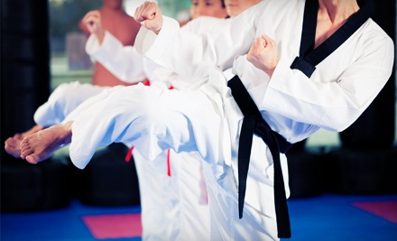 5 Krav Maga Classes (a $75 value) - Ultimate Martial Arts in Lincolnwood