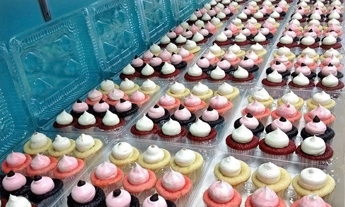 Fit Sweets Cupcakes - Knoxville: One Dozen Mini Cupcakes or Three Groupons, Each Good for $10 Worth of Sweets at Fit Sweets Cupcakes (50% Off)