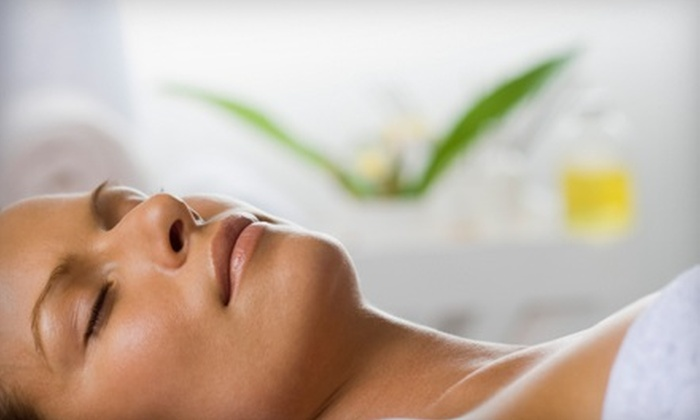 Norris of Houston - Houston: $65 for an Anti-Aging Facial at Norris of Houston ($135 Value)