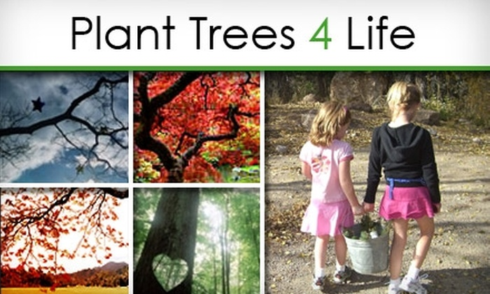 Plant Trees 4 Life - Fresno: $21 for a Side-by-Side Tree Planting for a Loved One from Plant Trees 4 Life ($35 Value)