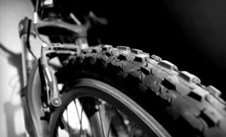 The Bike Shop at Las Colinas: 10-Hour Bike Rental - The Bike Shop at Las Colinas in Irving