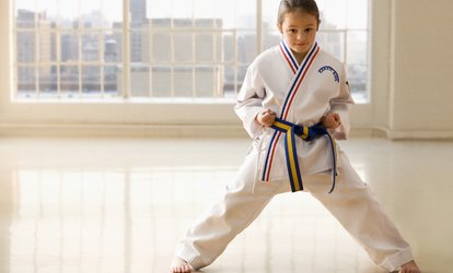 image for Eight Karate Lessons For One (£14) or Two (£26) Children with Jon Jepson Black Belt Academy