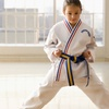 Eight Child's Karate Lessons