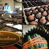 Half Off at Chocolates and More in Newcastle