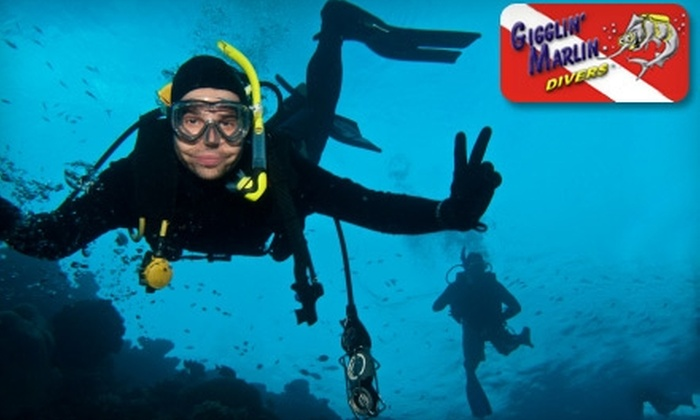 Gigglin' Marlin Divers - Greenway/ Upper Kirby: $20 for a Discover Scuba Diving Course ($50 Value) at Gigglin' Marlin Divers