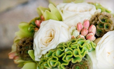 $30 Groupon to Sprout - Sprout in Fredericksburg