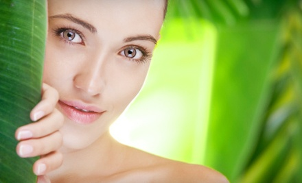 Comfort Zone Hydramemory Facial (a $75 value) - Sacred Hour in Rocky River