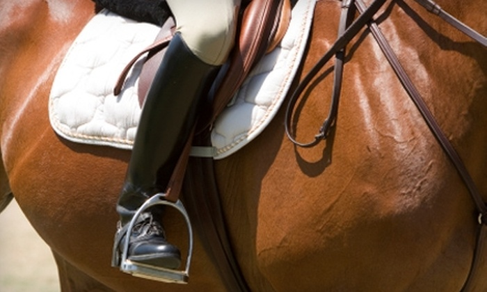 Horse Savvy Training - Poway: $25 for Two Horseback-Riding Group Lessons ($70 Value) or $35 for a Poway Lakes Trail Ride ($75 Value) at Horse Savvy Training in Poway