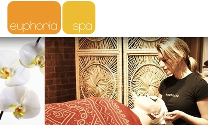 Euphoria Spa  - Tribeca: $45 for Magical Microderm Facial at Euphoria Spa