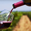 Up to 70% Off Summer Niagara Wine Tour
