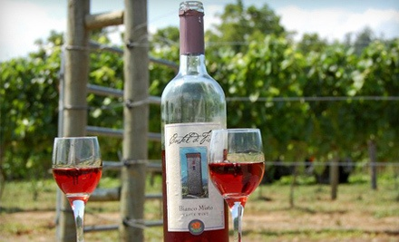Wine-Tasting Package for 2 (a $52 total value) - Cava Winery & Vineyard in Hamburg