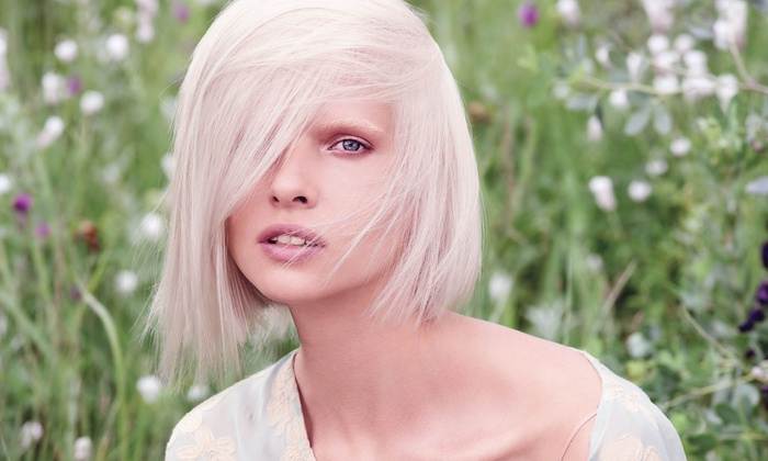 Douglas J Aveda Institute - Heartside-Downtown: $28 for a Haircut, Blowdry, and Botanical Treatment at Douglas J Aveda Institute ($56 Value)