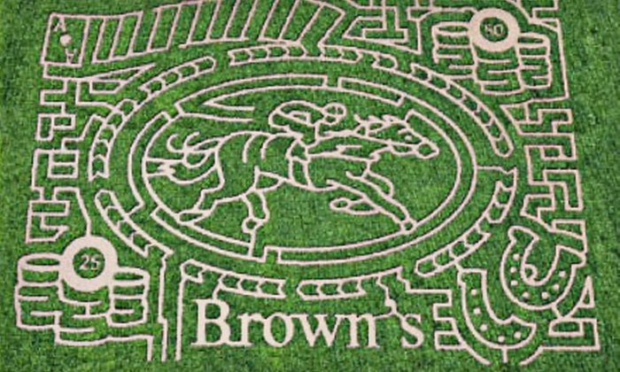 Brown's Farm Festivals - Oxford: Autumn-Festival Outing for One, Two, or Four to Brown's Farm Festivals (Up to 54% Off)