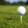 Up to 54% Off Golf Outing in Woodland