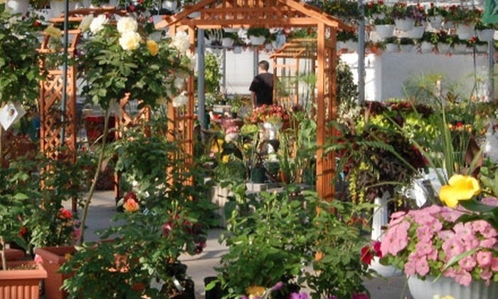 Floral Acres - Saskatoon: $10 for $20 Worth of Flowers, Shrubs, and Trees at Floral Acres