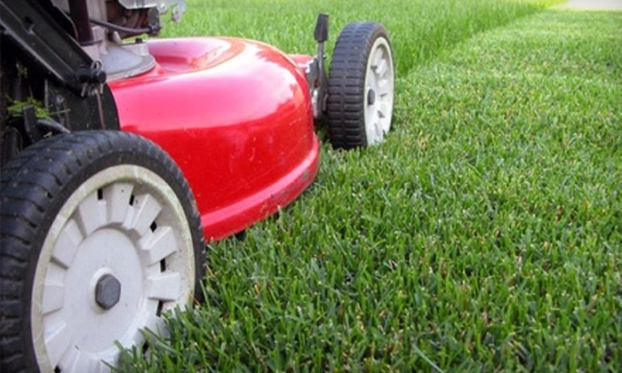 Steve's Lawn and Maintenance - Tallahassee: $30 for Lawn Care Services for Up to a Half-Acre from Steve's Lawn and Maintenance ($60 Value)