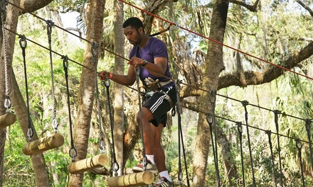 Ziplining and Aerial Adventure Experience for Two or Four at Zoom Air Adventure Park (Up to 43% Off)