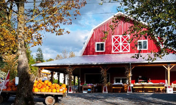 Maan Farms - Maan Farms Country Experience & Estate Winery: Fall Fun Package for Two or Four with Mazes, Petting Zoo, and Pumpkin at Maan Farms (Up to 55% Off)