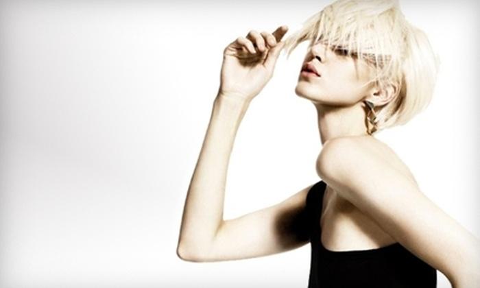 Eco Beauty Salon Spa - Fairmount Park: $25 for $50 Worth of Hair Services at Eco Beauty Salon Spa