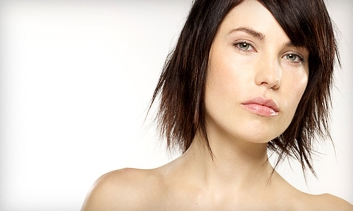 Hair & Company - Mount Pleasant: $20 for $40 Worth of Salon Services from Katie Richter at Hair & Company in Racine