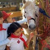 $7 for Two Petting-Zoo Admissions to Fiesta Farm