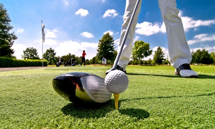 30- or 60-Minute Golf Lesson at Tom McGuinness Golf School in Palisades Park (Up to 54% Off)