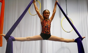 Ruby Karen Project/Orange County Aerial Arts: Four or Eight Kids' Circus Fitness Classes at Ruby Karen Project/Orange County Aerial Arts (Up to 56% Off)