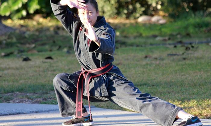 Chuan Wu Kung Fu Institute - Willow Glen: One Month of Kung Fu Lessons at Chuan Wu Kung Fu Institute ($200Value)