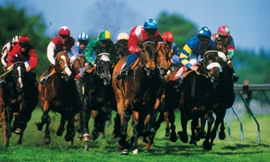 Gulfstream Park: Day at the Races for One, Two, or Four at Gulfstream Park (Up to 62% Off)