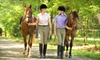 Up to 58% Off Private Horse-Riding Lessons