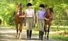 Cedar Ridge Arabians - Sand Creek: Five or Ten Private Horseback-Riding Lessons at Cedar Ridge Arabians, Inc. in Jordan (Up to 58% Off)