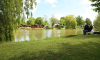 Suffolk: 2, 3, 4 or 7 Night Camping or Touring Pitch Stay at Carlton Meres Country Park