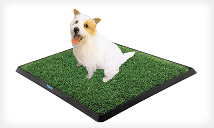 PetZoom Indoor Dog-Relief System: $10.99 for a PetZoom Pet Park Indoor Dog-Relief System ($29.90 List Price)