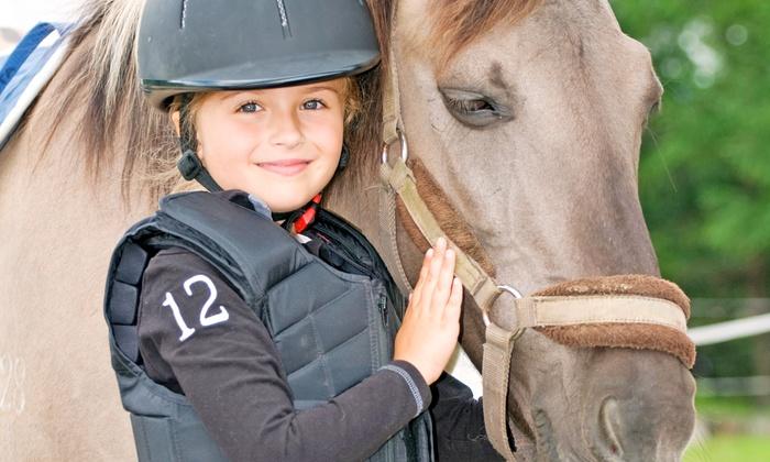 Cedarhill Farm - Marvin: 3, 5, or 10 Horseback-Riding Lessons at Cedarhill Farm (Up to 57% Off)
