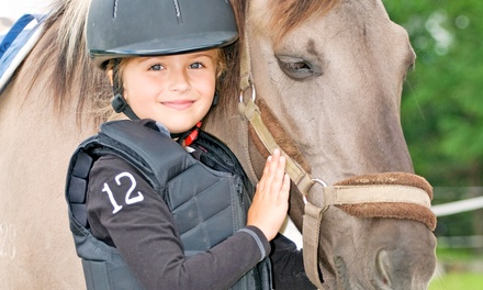 3, 5, or 10 Horseback-Riding Lessons at Cedarhill Farm (Up to 57% Off)