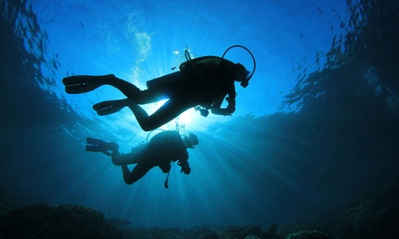 Open-Water Scuba-Certification Course with Gear Rental from Aquatic Ventures