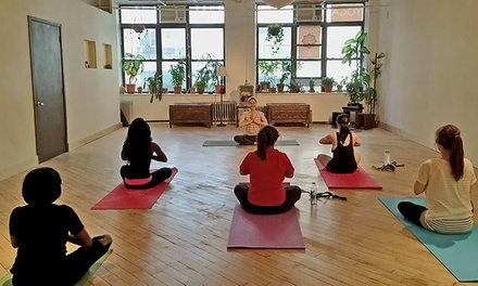 Five Drop-In Classes or Month of Unlimited Classes at Yoganesh Yoga (Up to 69% Off)