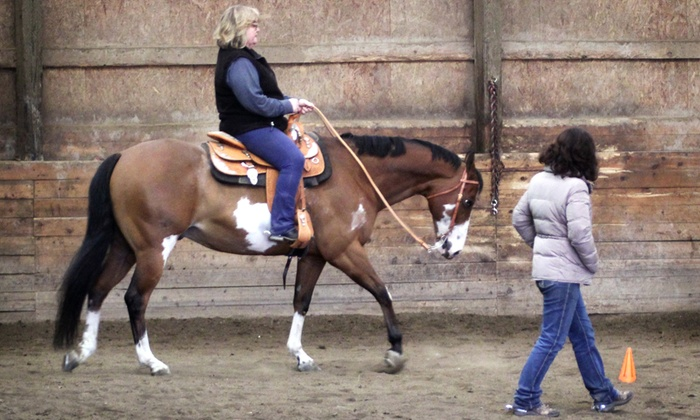Paradise Stables Riding Academy - Maltby: One, Two, Three, or Four Private Horseback-Riding Lessons at Paradise Stables Riding Academy (Up to 52% Off)