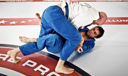 One Month of Unlimited Martial Arts Classes for One or Two at Genesis Jiu Jitsu (60% Off)