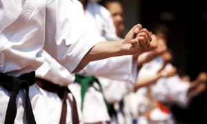 Tiger Kim's Tae Kwon Do: $27 for $49 Worth of Martial-Arts Lessons at Tiger Kim's Tae Kwon Do
