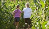 Ken's Produce - GARNER: Corn-Maze Visit for Two, Four, or Six at Ken's Korny Corn Maze (Up to 58% Off)