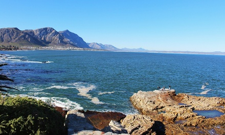 Hermanus: Two or ThreeNight Stay for Two Including Breakfast at Mountain View Manor