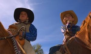 Sunset Ridge Performance Horses: $19 for $35 Worth of Horseback-Riding Lessons — Sunset Ridge Performance Horses