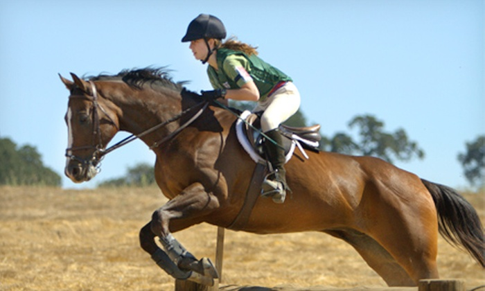 Zia Ranch Horsemanship Program - Knightsen: One or Three Private Horseback-Riding Lessons at Zia Ranch Horsemanship Program (Up to 52% Off)