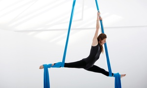 Stomping Ground: Two or Three Aerial Fitness Classes at Stomping Ground (Up to 53% Off)