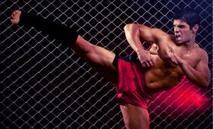Godin's Premier Martial Arts: $50 for $100 Worth of Boxing — Godin's Premier Krav Maga